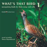 What´s that bird. Recognising birds by their songs and calls.